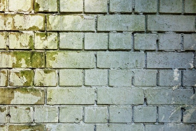 moho-limpieza-paredes-madrid